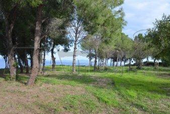 Земельный участок в Халкидики, Греция