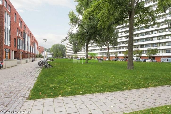 Квартира в амстердаме купить конституция недвижимость за рубежом