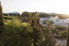 Коммерческая недвижимость в Корал Бей, Кипр