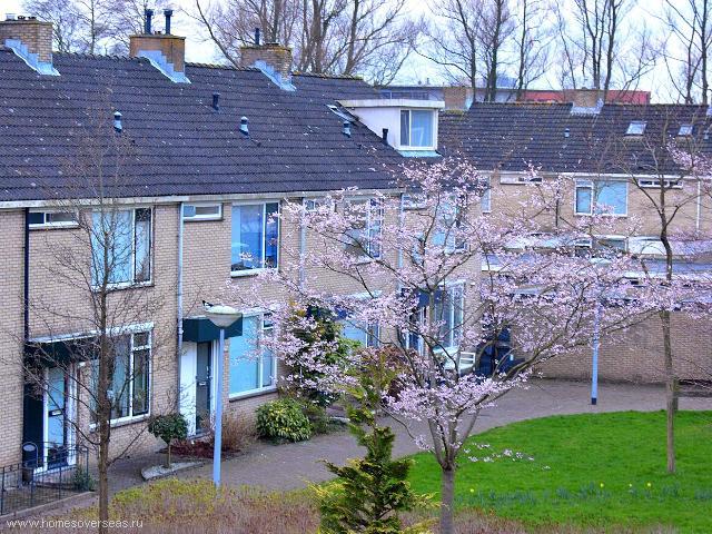 Купить дом в голландии каркасные дома за рубежом