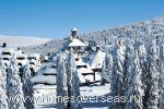 Сезон на горных курортах Черногории длится четыре месяца с декабря по март